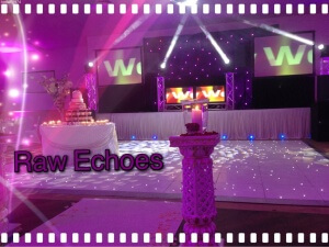 Bollywood Wedding & Club DJ | Indian DJs | Bhangra DJ |
