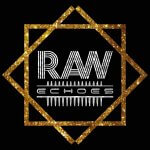 best asian wedding djs, bhangra dj, bollywood wedding djs. raw echoes